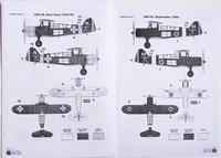 IAR 39, 1/72, Azur.