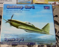 """Aer Moldova 1/55 Су-1 """"What if?"""""""